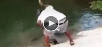 WATCH: What this fisherman did to this turtle will break your heart