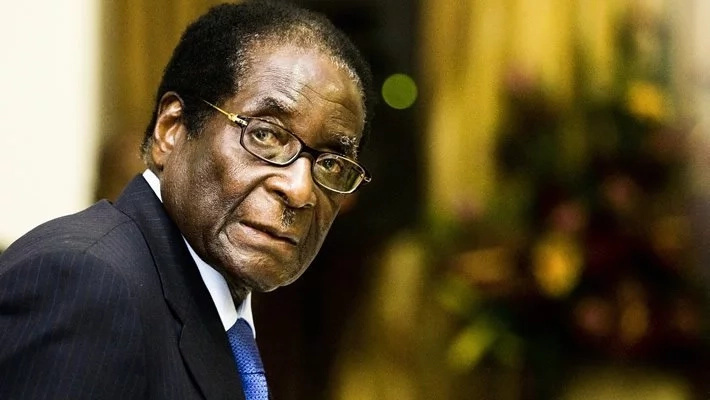 Mugabe granted immunity, will be staying in Zimbabwe says source