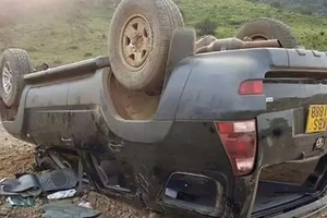 Governors chase car rolls as youths turn against William Ruto