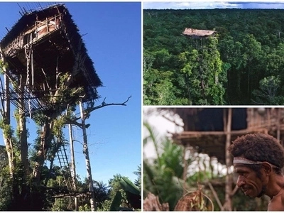 Meet secretive tribe who live in forest tree houses and didn't know other people existed until 1970s