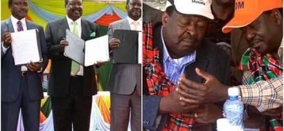 My Luhya brothers, when will MUDAVADI ever learn?