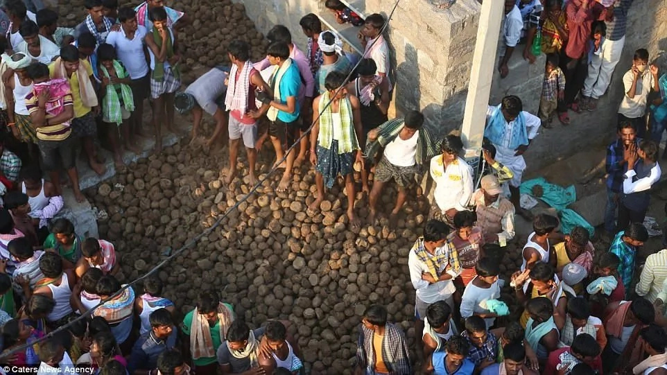 Thousands of villagers take part in bizarre cow dung slinging match (photos)