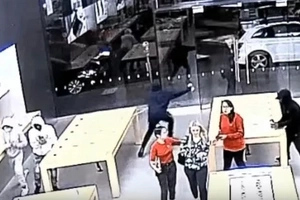 Audacious Group Of Thieves Rob An Apple Store Twice In The Same Week