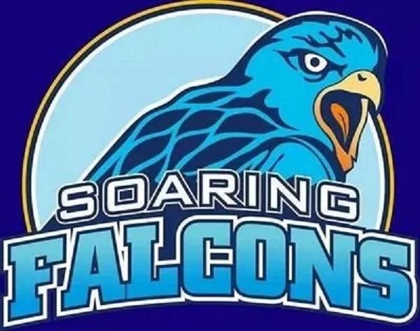 falcons-logo