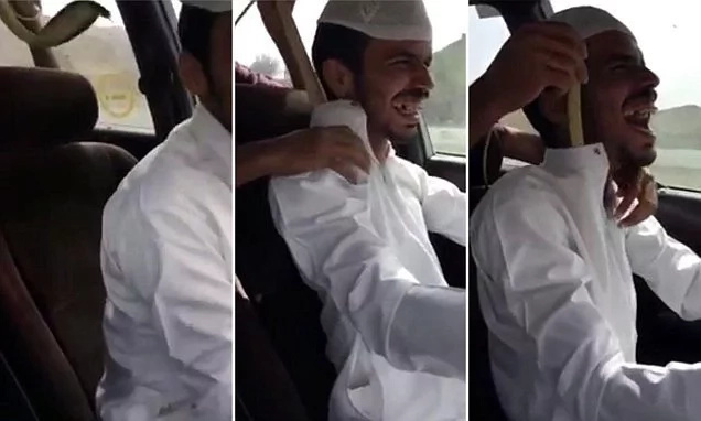 Man Puts Deadly Cobra On Friend, While He Is Behind The Wheel (photos, video)