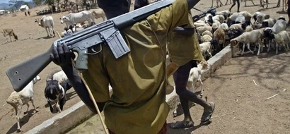 Fresh Inter-Ethnic Fights Claim 3 Lives In Isiolo County