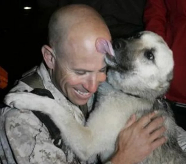 Iraqi Dog Walks 70 Miles Through War Zone to Join His American Soldier