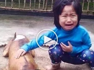 A tearful story: 5-year-old girl finds her missing pet dog being sold ready-cooked