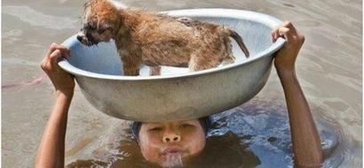La foto de este valiente jovencito que salvó a su perrito de ahogarse derretirá tu corazón