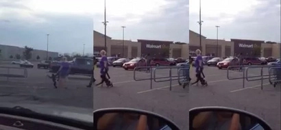 A monkey runs loose on a Walmart parking lot