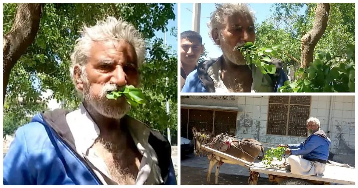 Man, 50, is addicted to eating TREES after resorting to them when he was too poor to buy food (photos, video)