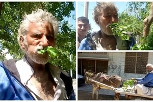 Man, 50, is addicted to eating TREES after resorting to them when he was too poor to buy food (photos)