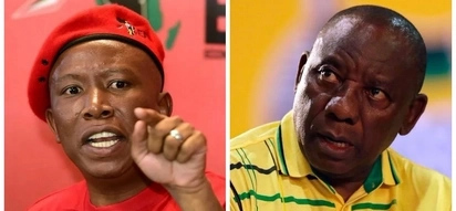 Malema challenges billionaire president to donate his salary to improve public healthcare