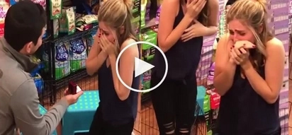 Man makes an unexpected proposal at a pet store... Girl's reaction is hilarious!