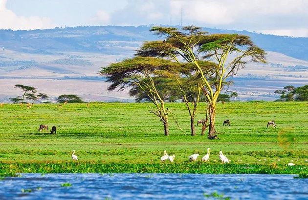 Gorgeous photos that prove Kenya is a beautiful country
