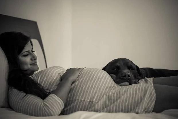 Embarazada se negó a renunciar a sus mascotas, dice que sus 5 perros la ayudaron a prepararse para la maternidad