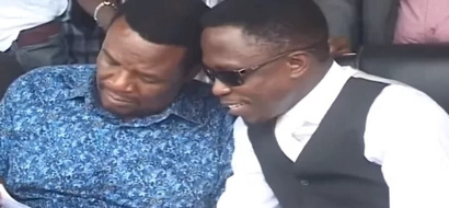 See how much Ababu contributed to ODM monthly