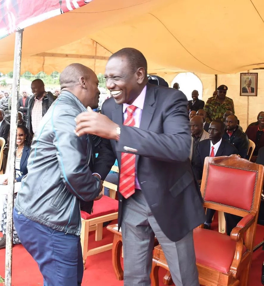 Interesting facts about Jubilee rebel Senator opposing Ruto