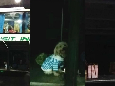 Irresponsible owner leaves poor dog inside the compartment of an Olongapo-Pasay bus