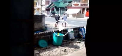 Shocked netizen shares hilarious video of drunk Pinoys playing with their fighting roosters