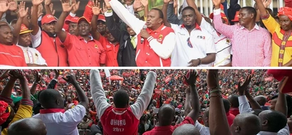 UhuRuto's festive day after being cleared by IEBC ends up in hospital