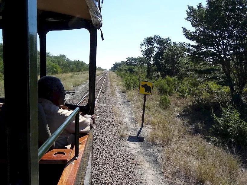 Kenya's train through parks
