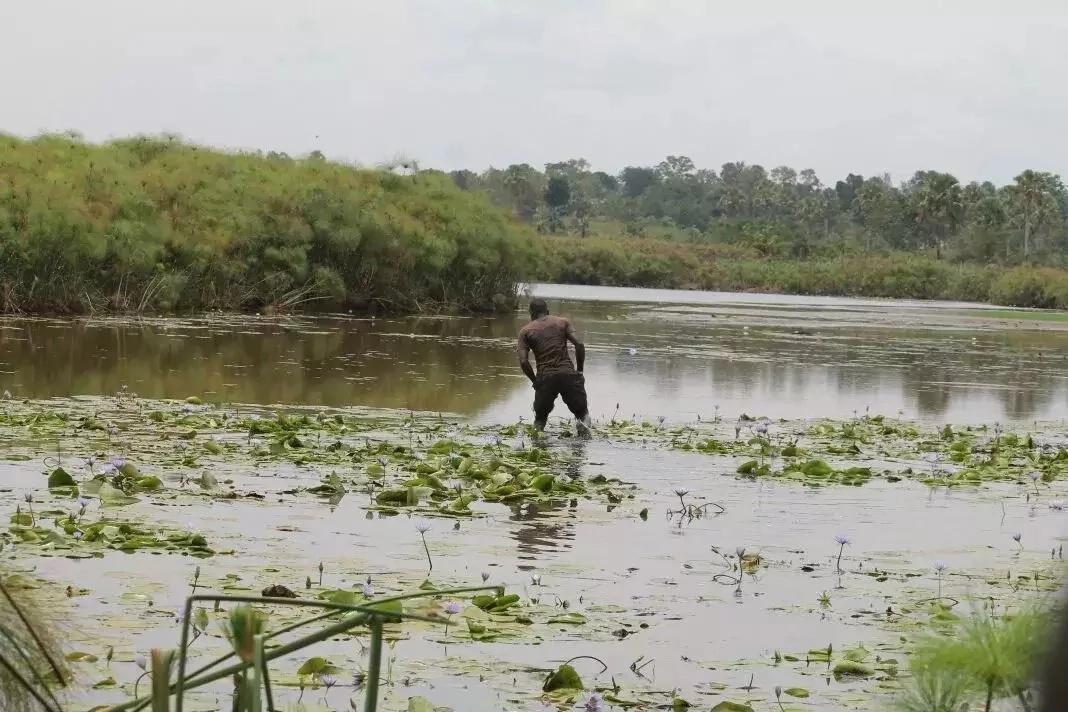 AJABU: ZIWA latokea kimiujiza Busia na kushtua wakazi