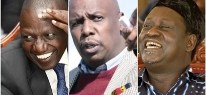 Comparing William Ruto with Gideon Moi is like comparing an elephant with a rat