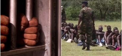 50 youth locked up after submitting fake KDF admission papers