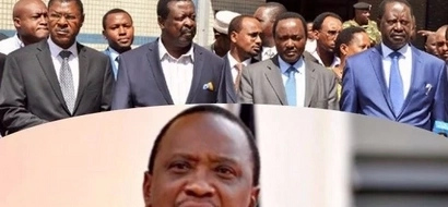 Was Raila forced to go to court? TUKO.co.ke has details
