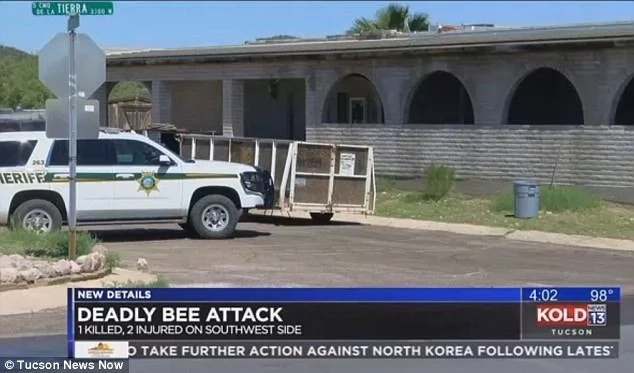 Un-bee-livable! Man, 48, dies after an attack by a swarm of bees