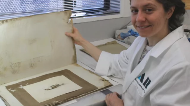 Beautifully preserved painting survives harsh Antarctic conditions