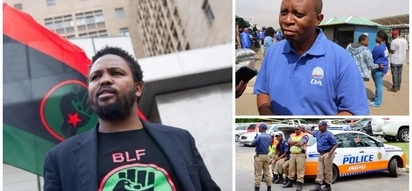 BLF says DA-led Joburg city council trying to purge city of black people