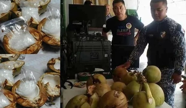 Drug traders used coconuts to hide the illegal substance