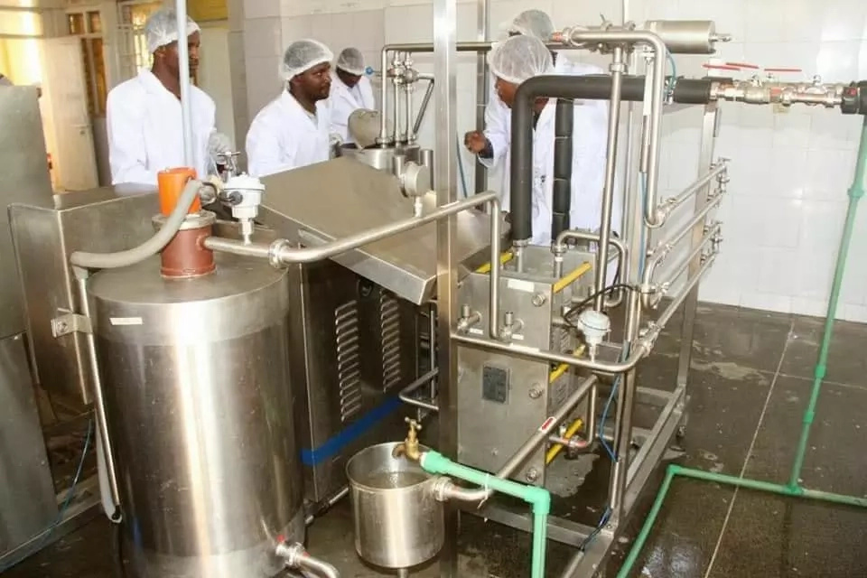 Makueni becomes first county to sell branded milk, process mangoes