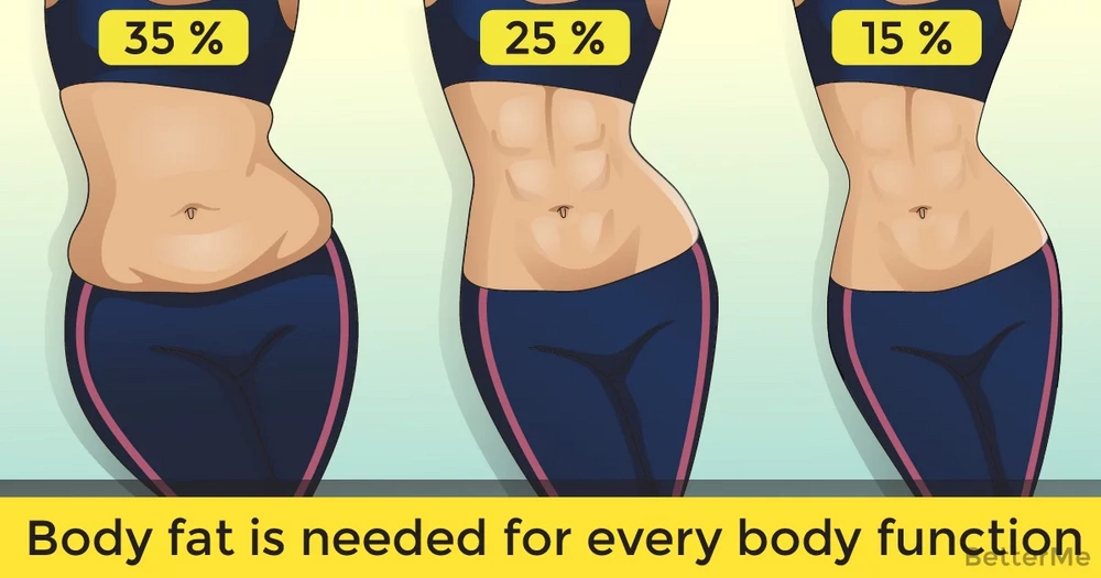 Body fat is needed for every body function
