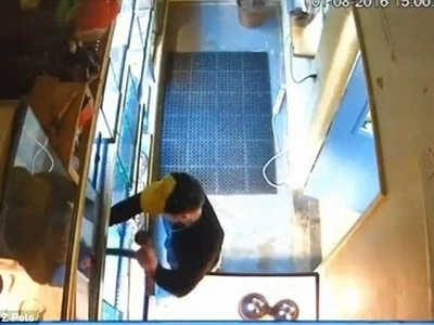 See man stealing python from pet store by putting it down his PANTS (photos, video)
