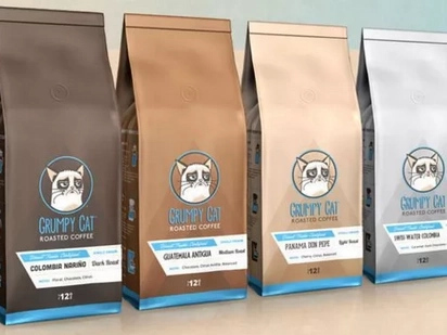 Grumpy Cat Wants $600K From Company That Sells Grumpy Cat Coffee That Looks Like Kitty Litter