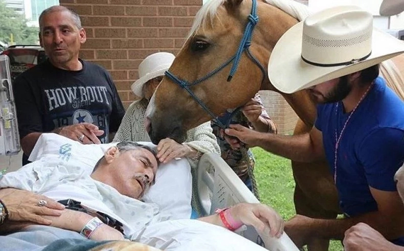 This man's last wish was to say see his horses for one last time