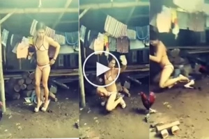 This Filipina was taking photo, but the chicken decided to break her plans... This video went viral