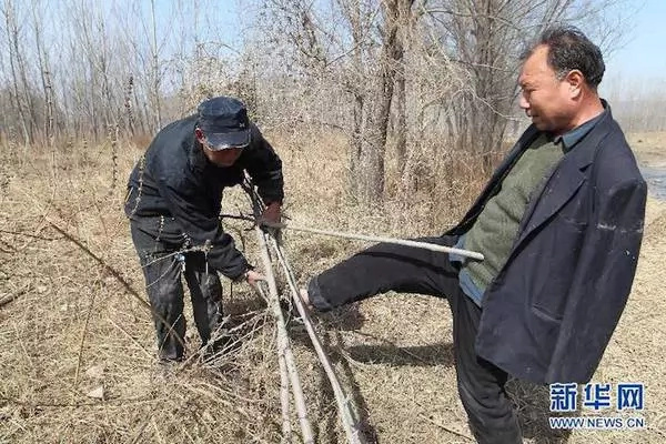 Hombre ciego y su mejor amigo sin brazos plantan 10.000 árboles