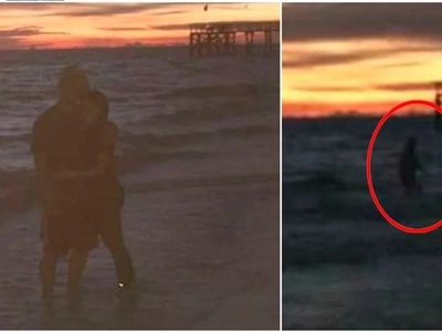Couple thought they were alone at the beach but then they saw this in the ocean