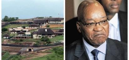 Criminals force Zuma to postpone Nkandla homecoming ceremony