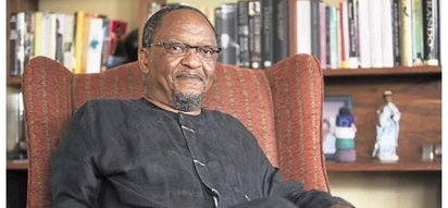 Opinion: Njabulo Ndebele says the syndicated thieving has become the purpose of the government