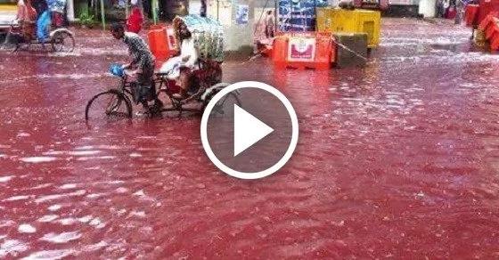 ¿Por qué estos ríos parecen regados de sangre?…¡porque lo están!
