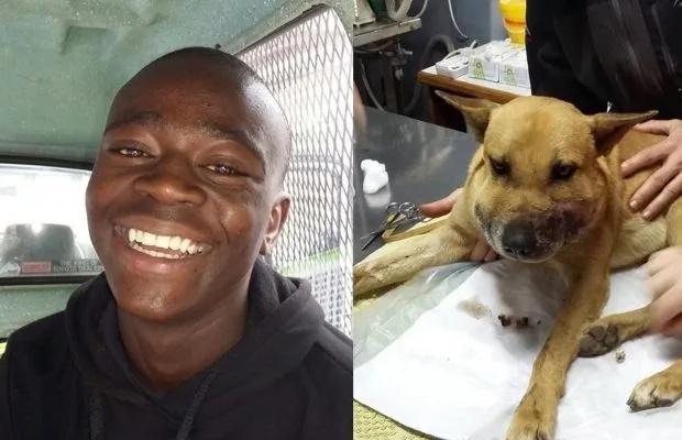 Treasure saved his dog's life. Photo: Good Things Guy