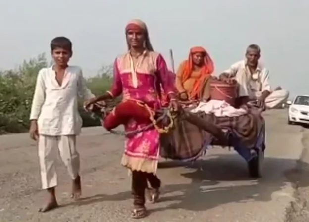 Tricksters stole their mule, forcing them to walk. Photo: India Times