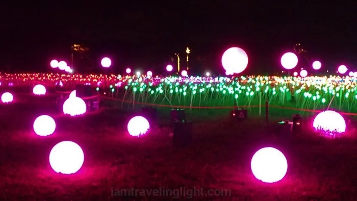 Visit the Magical Field of Lights in Laguna this Christmas
