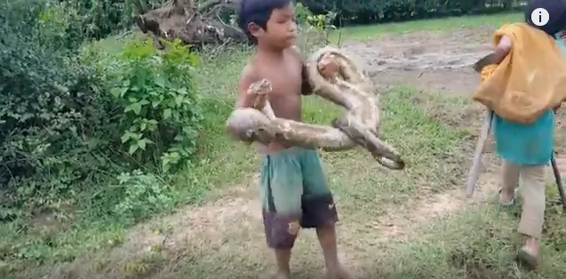 They carried their snake haul away. Photo: YouTube/Cambodia Daily Life