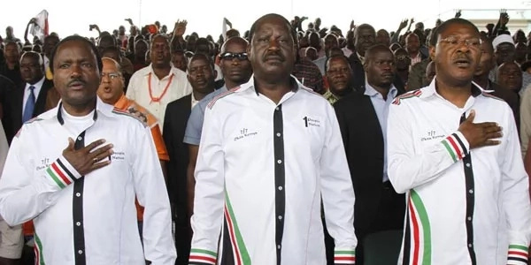 Doctors shout down Raila and Kalonzo at Uhuru Park